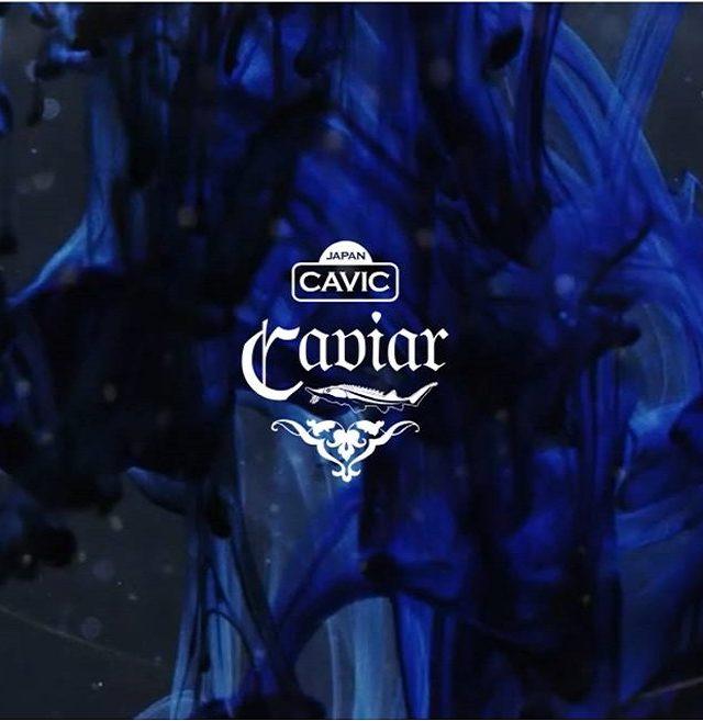 瀬戸内キャビア「CAVIC」ブランドサイト